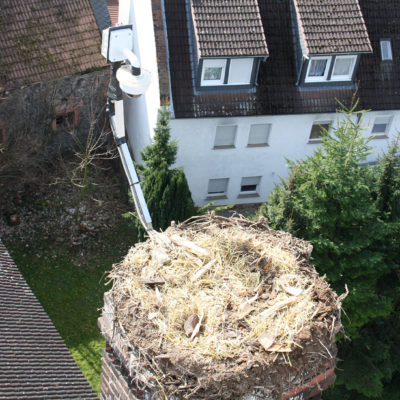Das bezugsfertige Nest in 23 Meter Höhe