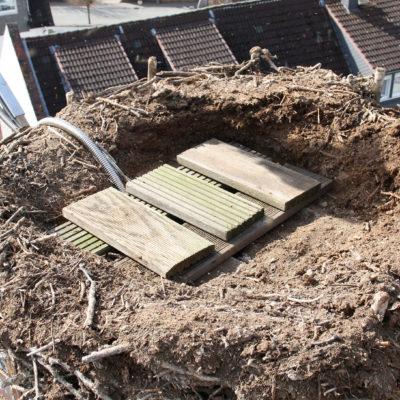 Der vermoderte Nestboden wird renoviert